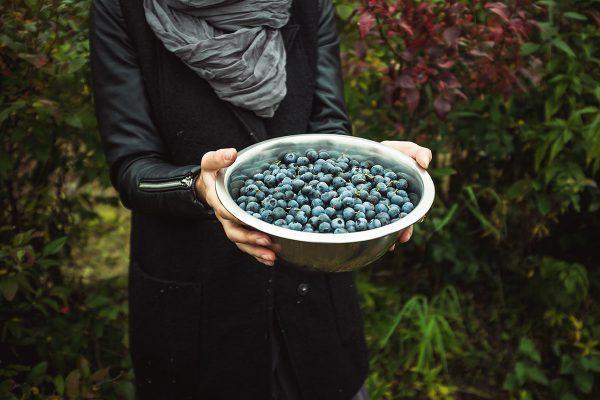 Kas ir antioksidanti un kur tos atrast?
